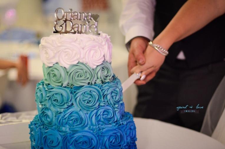Daniel-+-Oriana's-Wedding-26th-April-2014---Reception-274