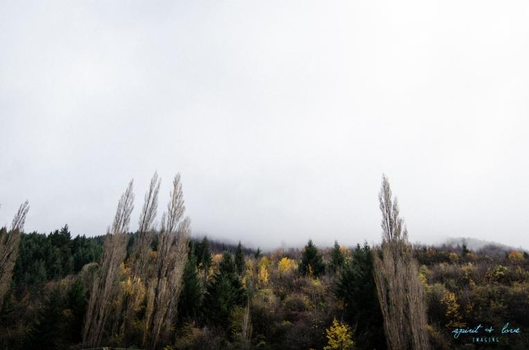 Queenstown-New-Zealand-2015-122