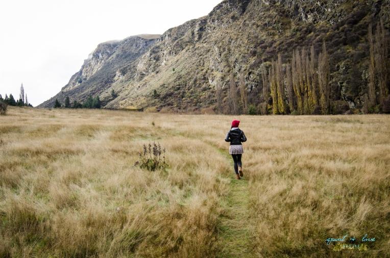 Queenstown-New-Zealand-2015-131