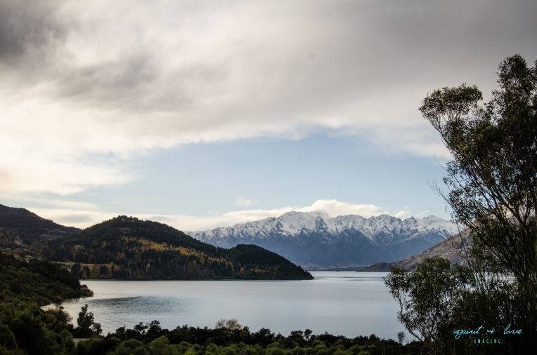 Queenstown-New-Zealand-2015-213