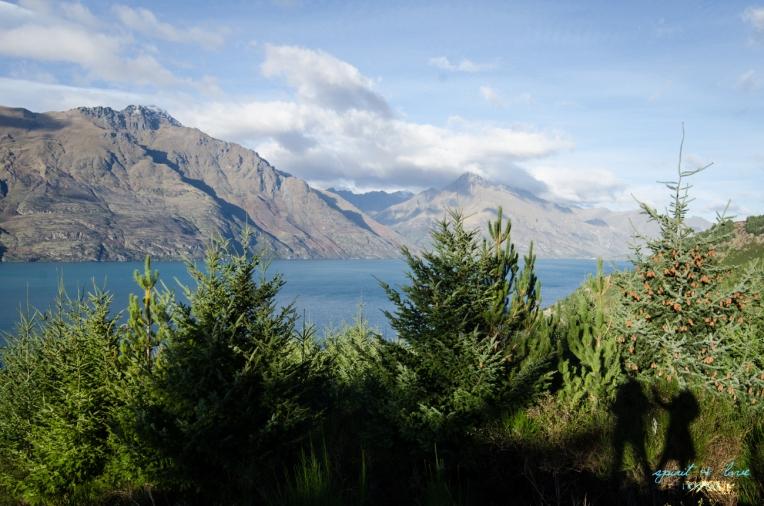 Queenstown-New-Zealand-2015-30