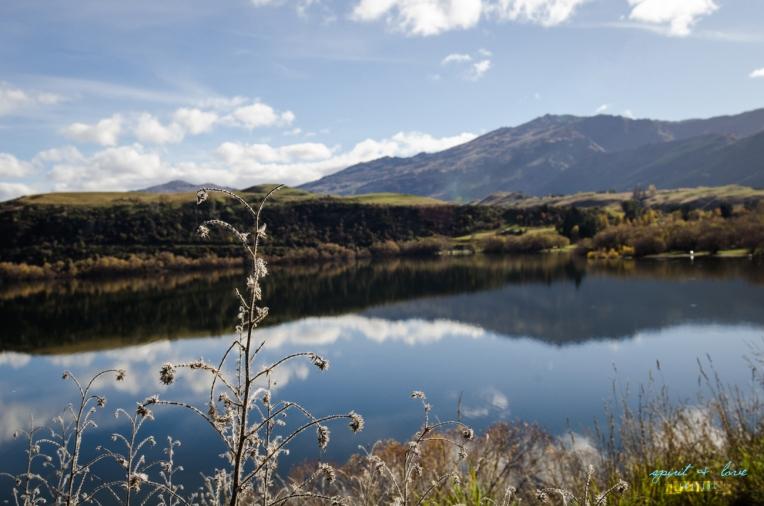 Queenstown-New-Zealand-2015-58