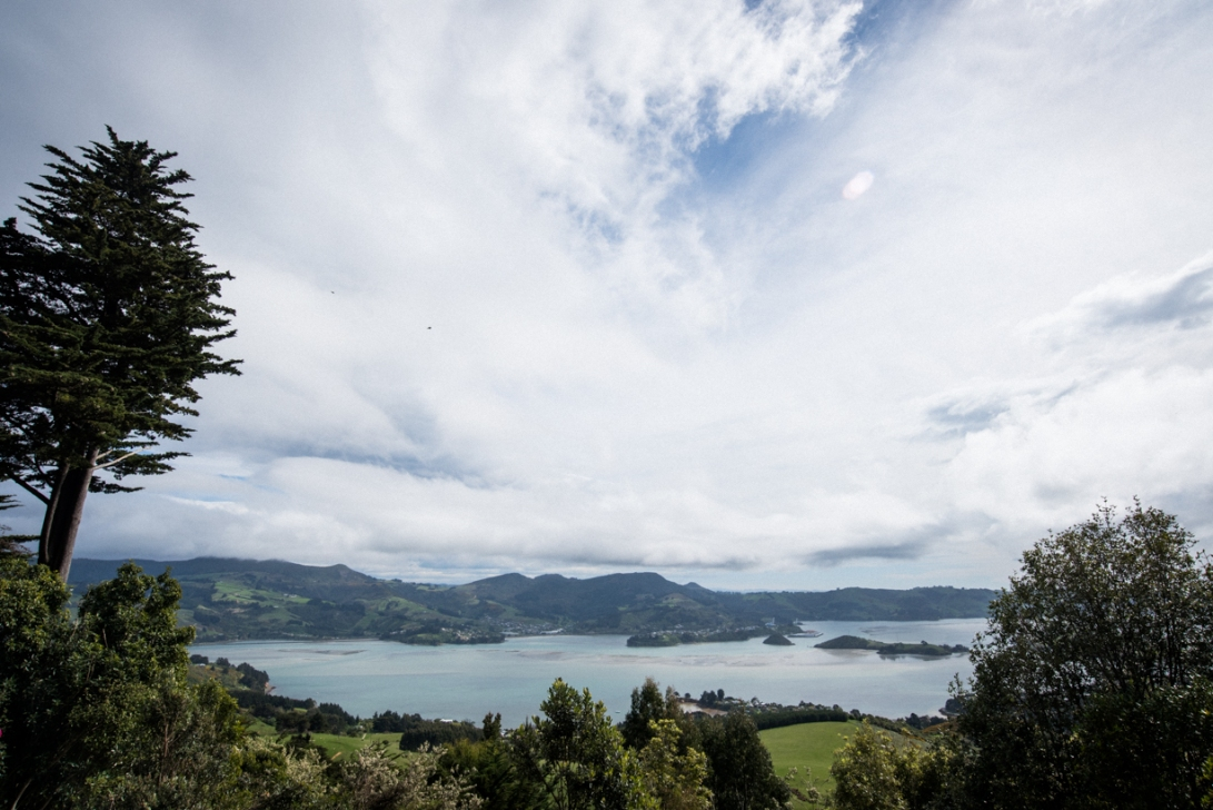 south-new-zealand-111