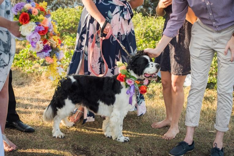 Alex & Lauren's Wedding-123