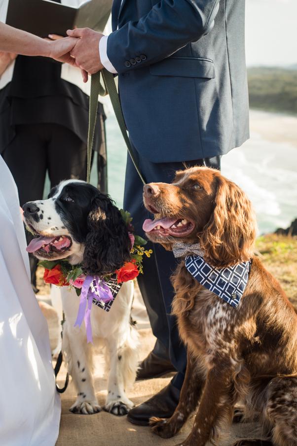 Alex & Lauren's Wedding-47